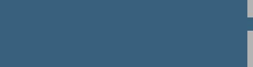 Dallas Observer Logo (Grayscale)